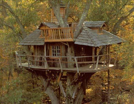 Il canto del racconto dipinto la casa sull 39 albero - La casa sull albero mobili ...
