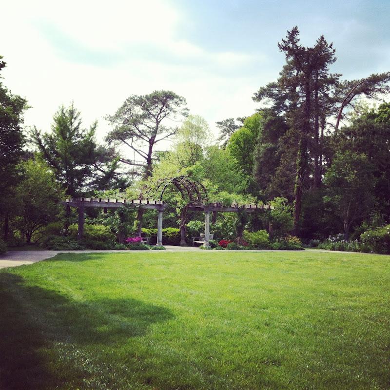 Nezbeth amp honerkamp s wedding ceremony ault park rose garden cinci