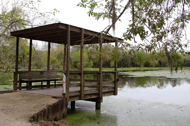 Covered Fishing Deck on Elm Lake-Brazos Bend State Park-Needville, Texas