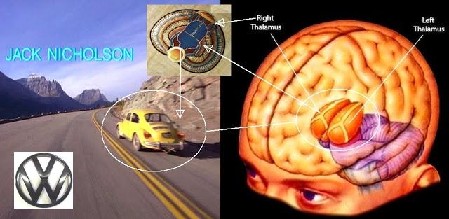 http://2.bp.blogspot.com/-yaeSnKU22ZE/UjMRIbb8DVI/AAAAAAAAeRs/n4Dzkfmrpbo/s640/shining+brain+beetle+vw.jpg