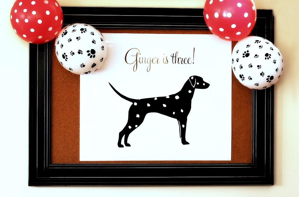 Dalmatian dog poster