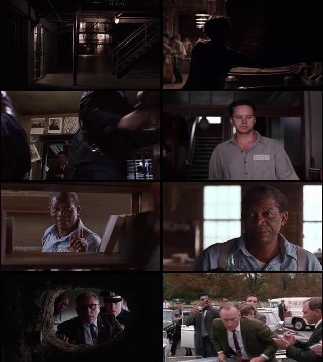 The Shawshank Redemption 1994 Dual Audio Hindi 480p BRRip