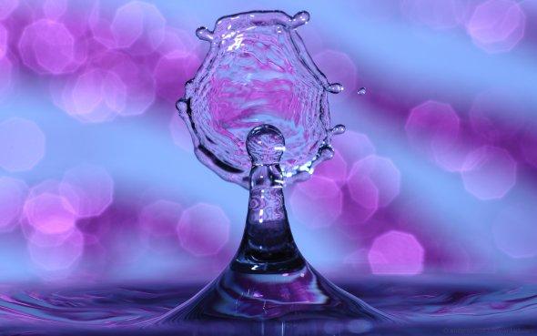 Ryan Przybylski endprocess83 deviantart fotografia macro gotas de água