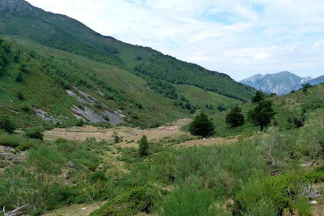 Braña del Gumial - Aller - Asturias