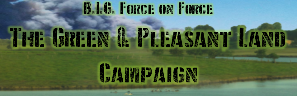 BIG Force on Force 15mm Wargaming