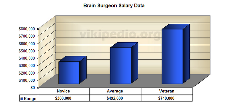 brain surgeon salary | orthodontist salary, Human Body