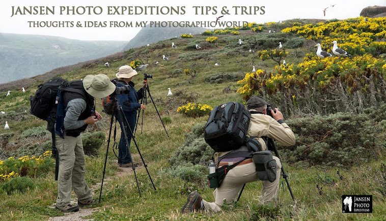 JANSEN PHOTO EXPEDITIONS TIPS AND TRIPS BLOG