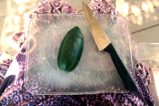 Knife and cucumber prepared for carving