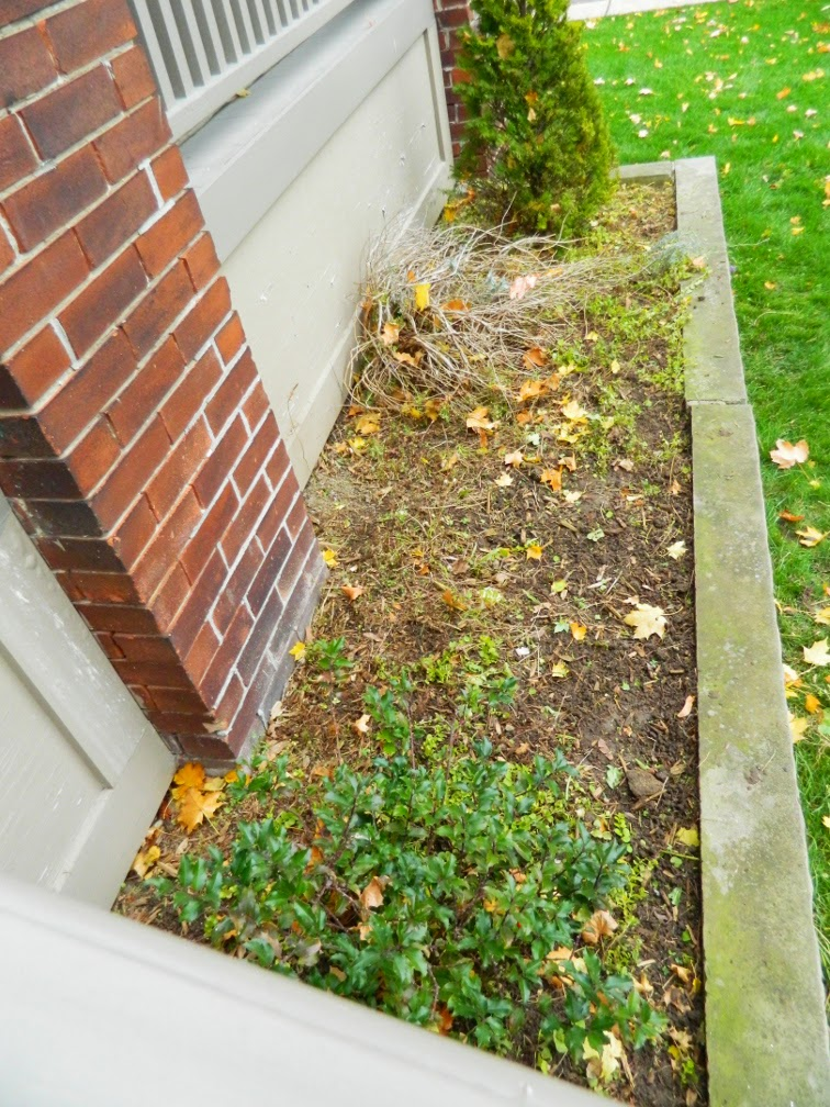Toronto garden cleanup after Broadview North Paul Jung Gardening Services