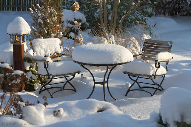 Gartenblog geniesser garten winter im garten for Garten pool im winter