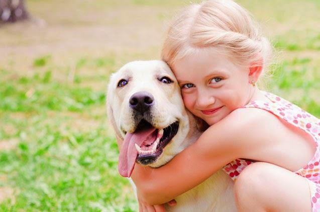 Fotos de cachorros fofos e seus donos