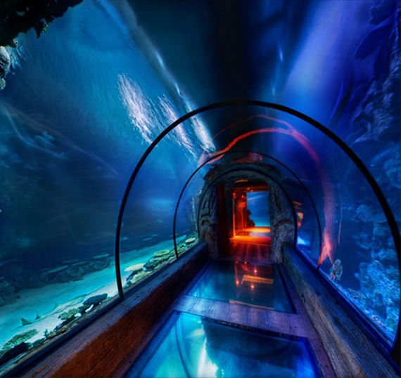 10 Coolest Underwater Places Cuzz Blue