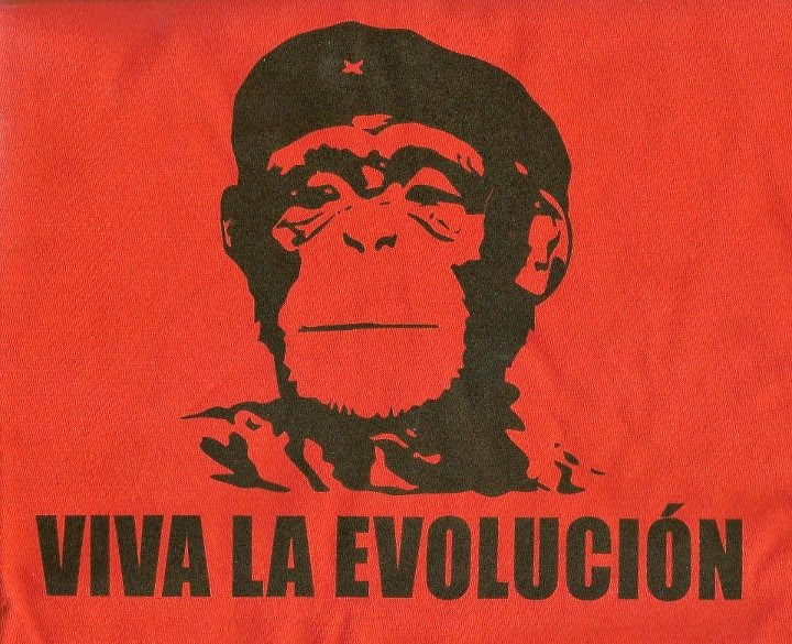 Viva la Evolución - a monkey in the Che Guevara pose