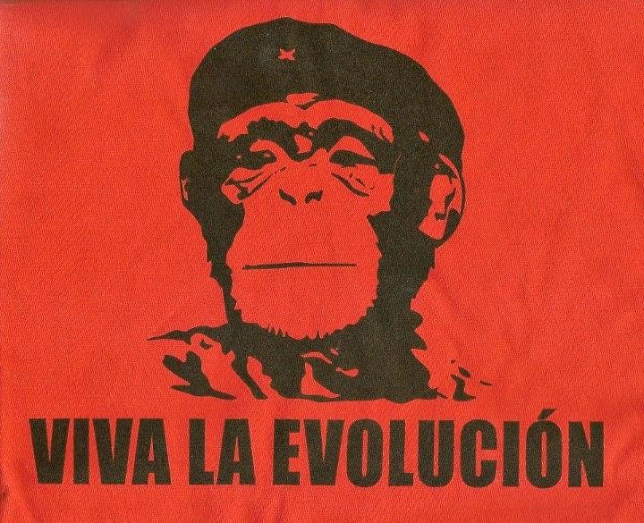 Viva la Evolución - a monkey in the Che Guevara pose