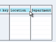 Include Structure in SAP TABLES