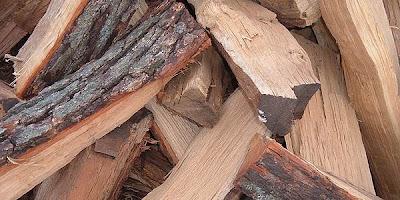Leña de los troncos de los árboles