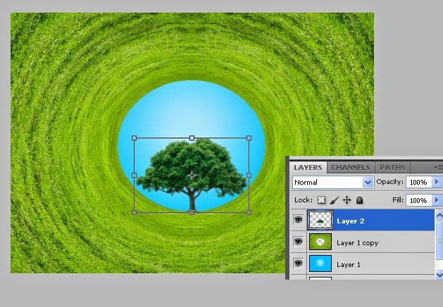 polar coordinate photoshop, efek foto polar,