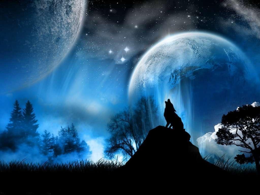Aladdin 4D: A Lone Wolf