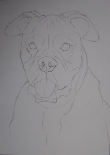 esquisse chien