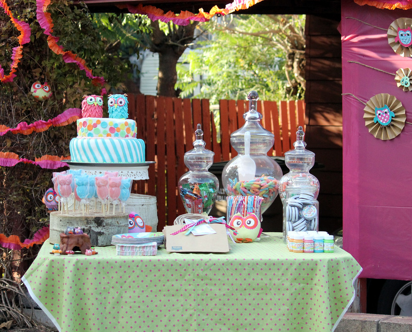 Amazing owl birthday party bless this mess for 1st birthday decoration themes
