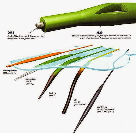 The rogue outdoors fly line characteristics basics of for Types of fishing line