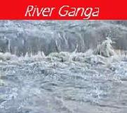 ganga pollution essay sample