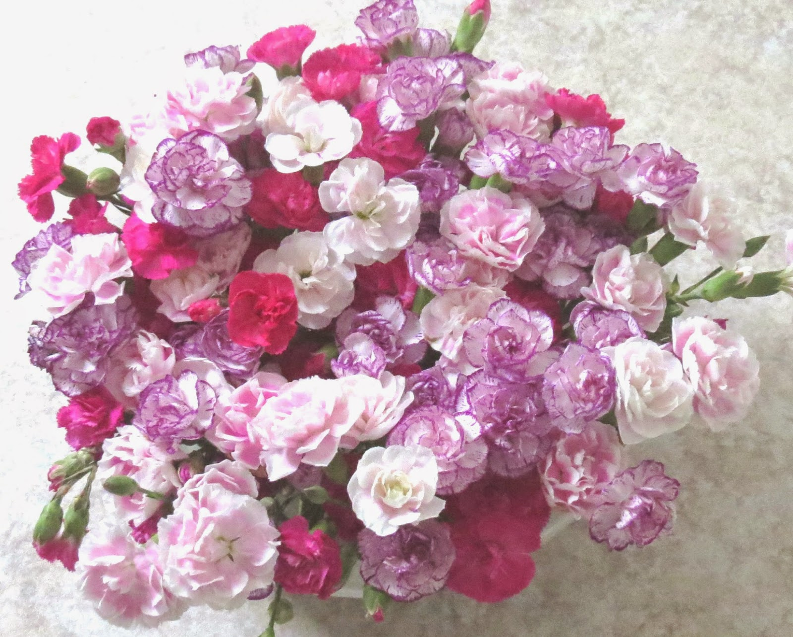 Ashleigh lawrence rye how to display carnations diy rose bowl if youd like advice on how to make your cut flowers last longer at home or you want some ideas for alternatives to generic cut flower food izmirmasajfo