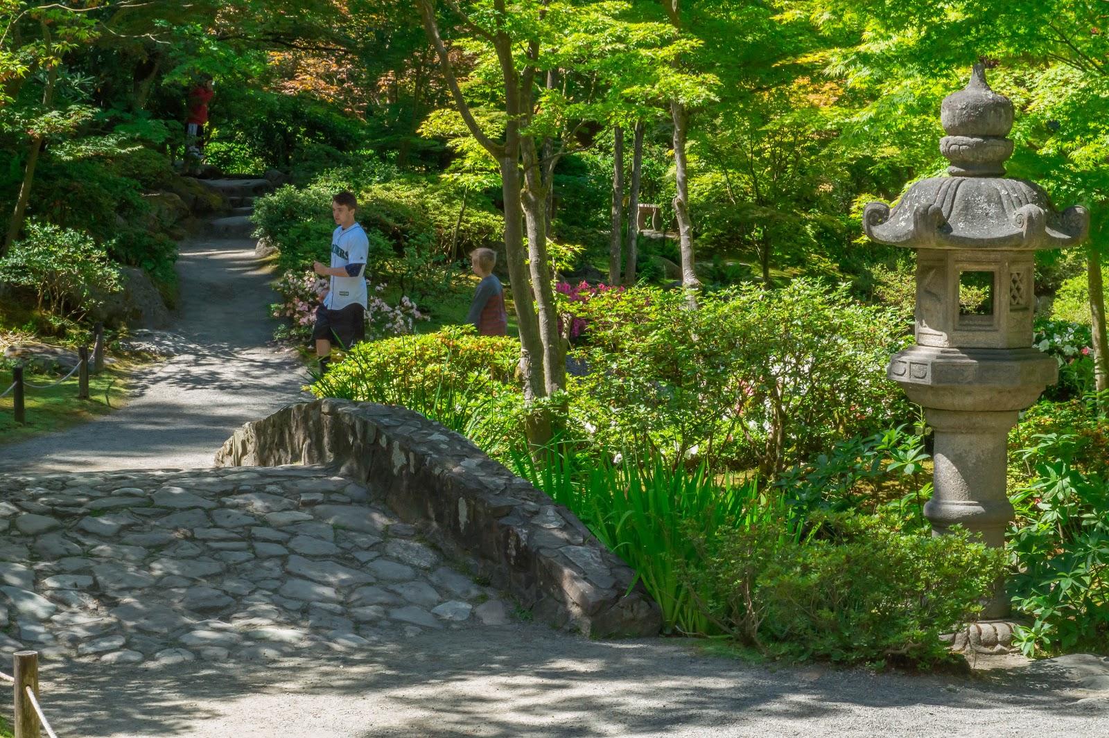 Японский сад в Washington Park Arboretum