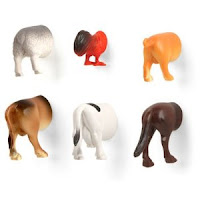 animal+butt+magnets.jpg (300×300)
