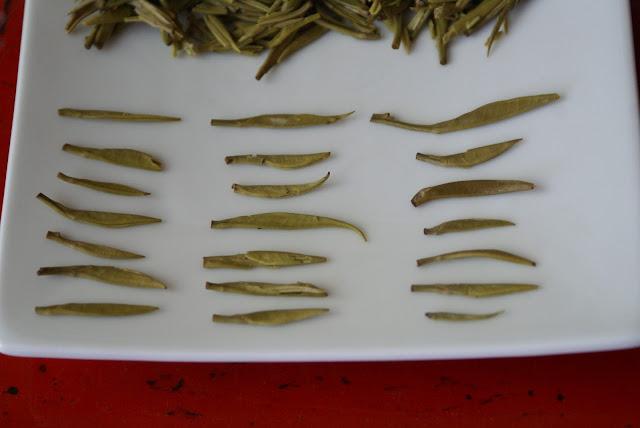 bourgeon de thé