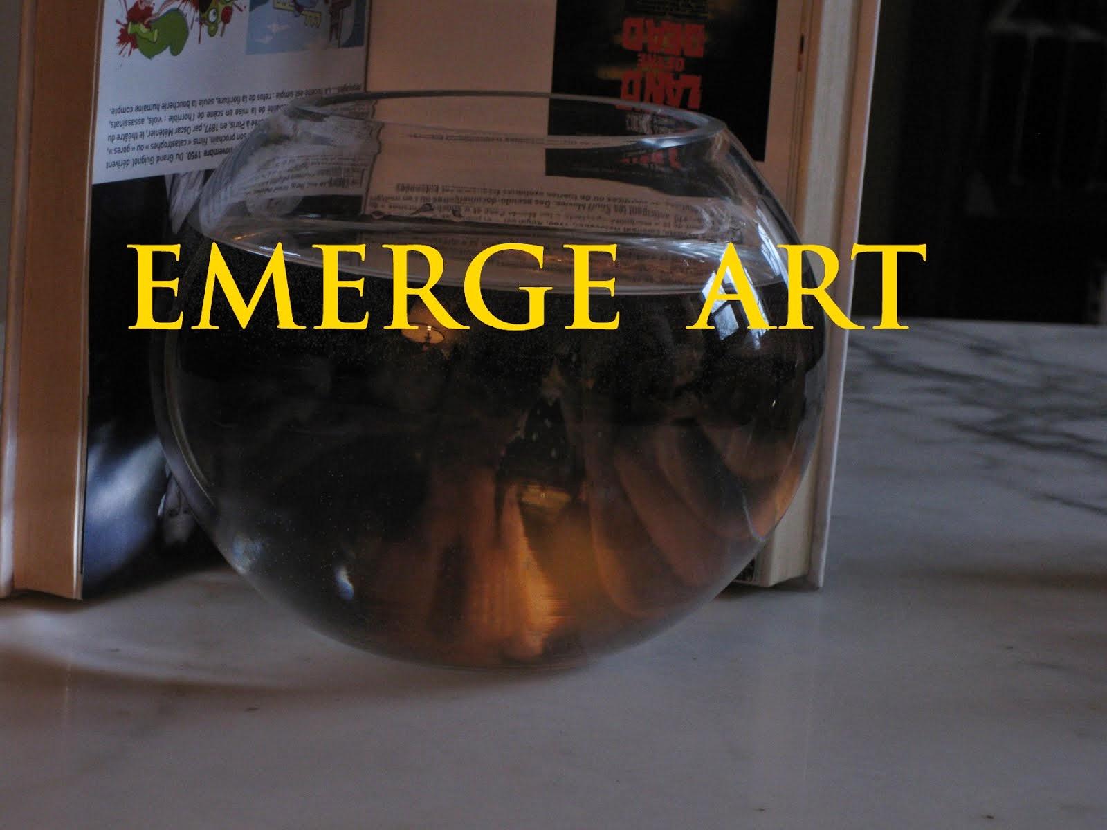 EMERGE ART with the book «Extrême: Esthétiques de la limite dépassée» by Paul Ardenne / Flammarion