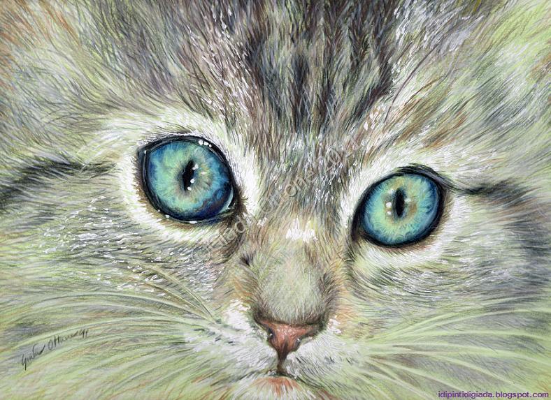 I dipinti di giada acquamarina - Immagine del gatto a colori ...