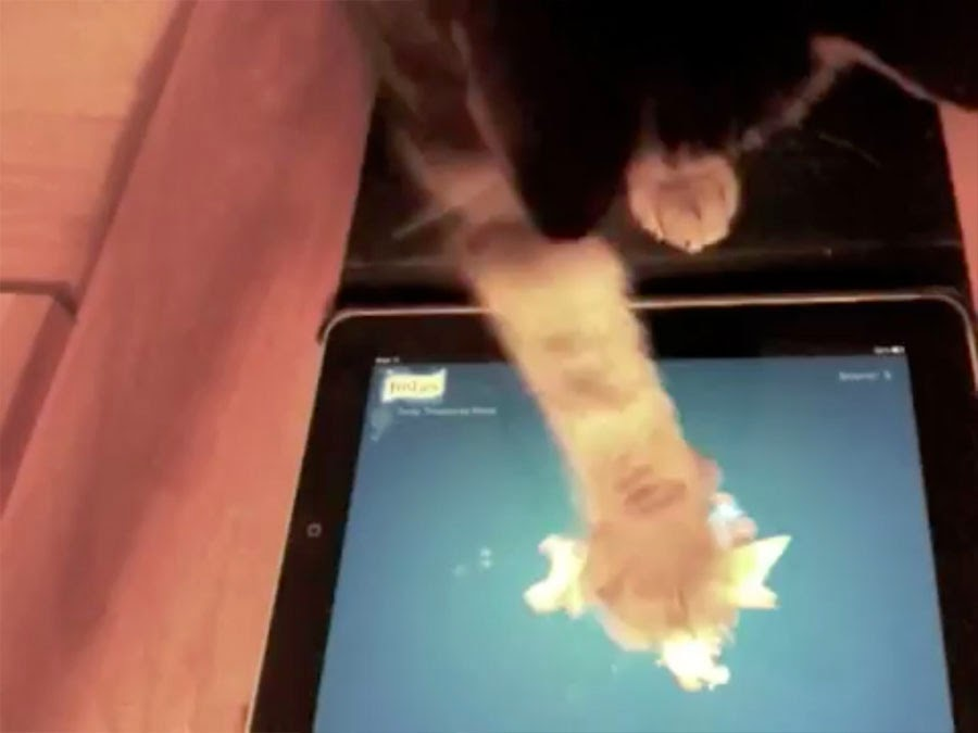 free games for cats
