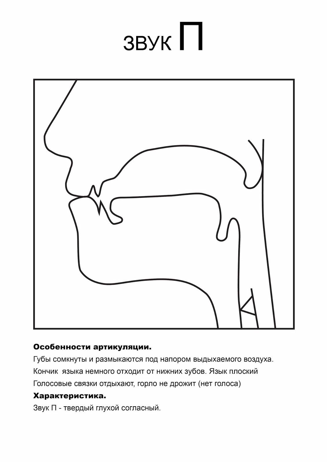 Артикуляционные профили звуков в картинках
