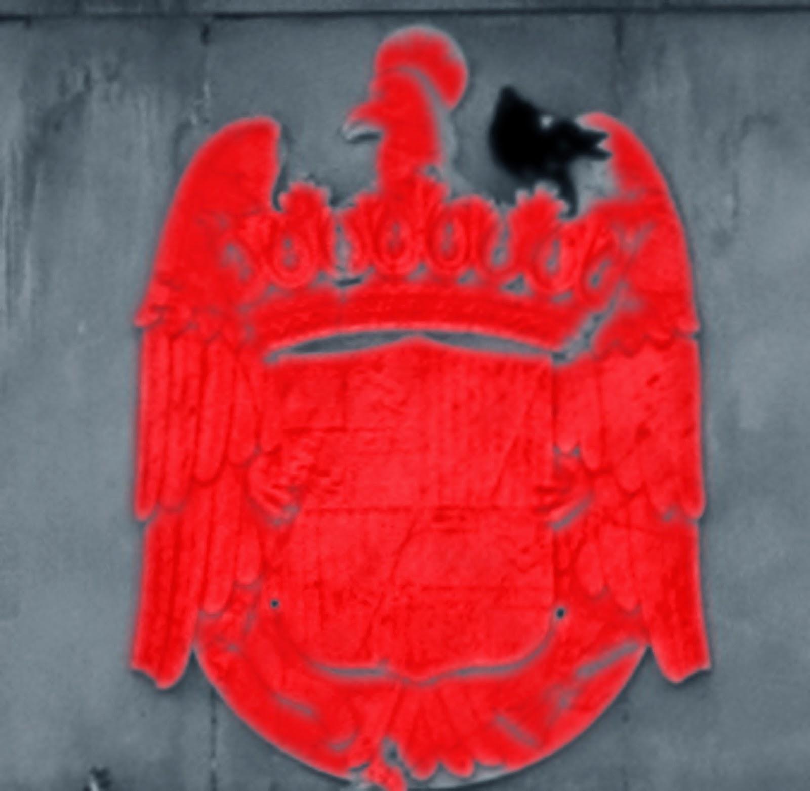águila roja paloma negra3