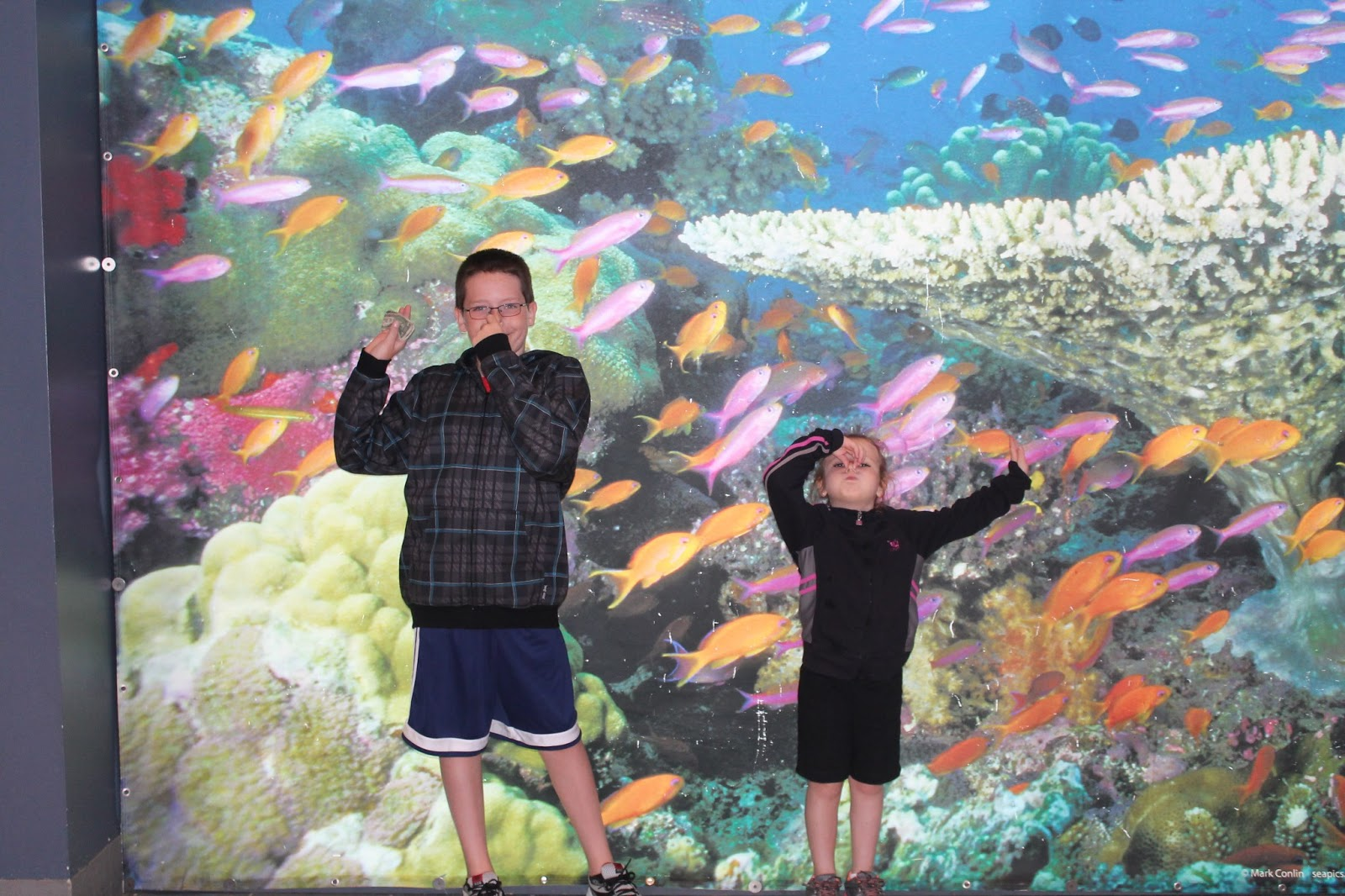 adventure aquarium family 4 pack of tickets giveaway