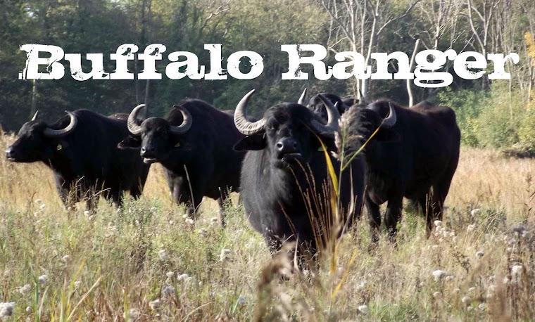 Buffalo Ranger