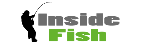 Inside Fish