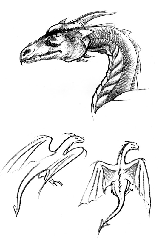 Another Dragon Head and sketches title=