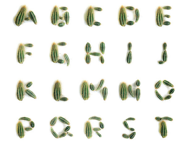 If It's Hip, It's Here (Archives): Hairvetica Alphabet ...