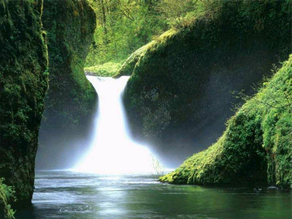 http://2.bp.blogspot.com/-yiWS6DKJWYg/TanBipLKpNI/AAAAAAAAGOQ/Gu1uePy2SRU/s1600/nature%2Bwallpapers.jpg%2B%25252832%252529.jpg