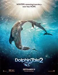 Winter el Delfín 2