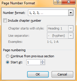 Page Number Format1
