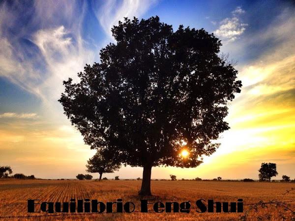 FENG SHUI: LA CIENCIA DEL PAISAJE Y LA ARMON�A (PARTE II)