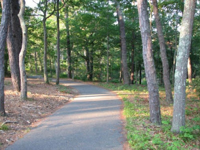 Bicycling Path at Nickerson State Park Brewster