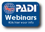Nederlandstalige webinars