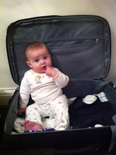 Freddie in the suitcase