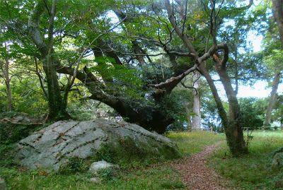 Top of Mt Shizuki, Hagi Castle, Yamaguchi
