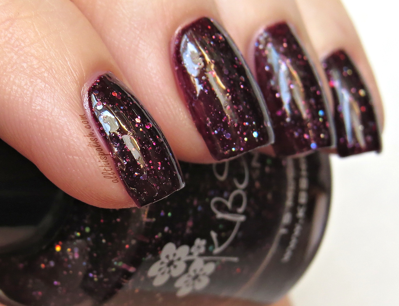 KBShimmer A Raisin To Live