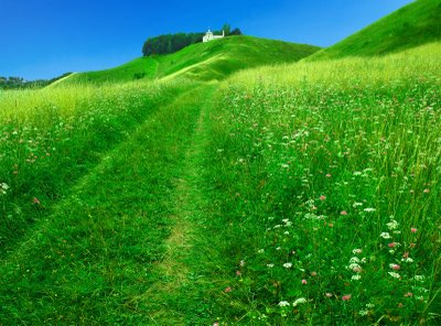 15 Wonderful HD <b>Meadow Wallpapers</b> - HDWallSource.com